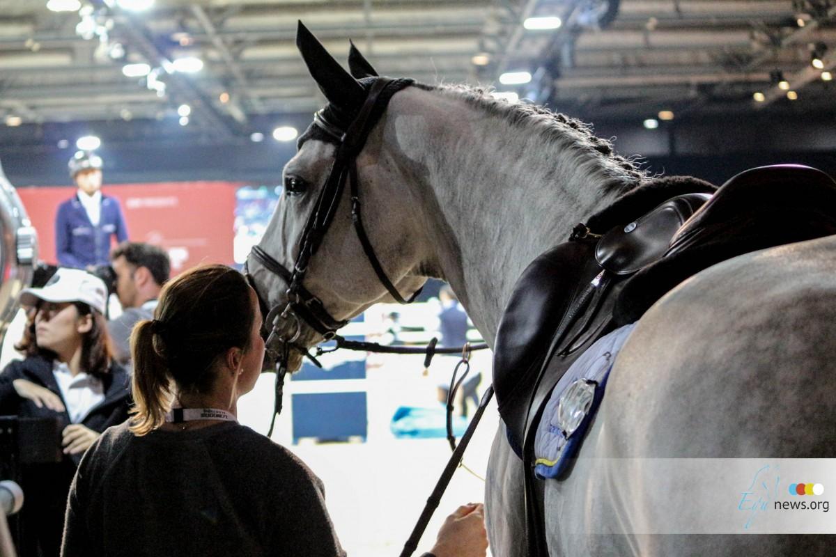 """Tips and tricks: """"Als groom is het enorm belangrijk om de benen van je paarden te kennen"""""""