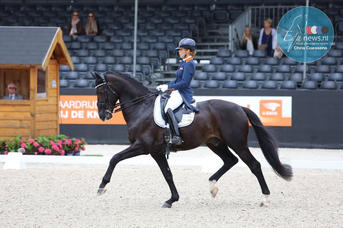 World Championships young horses moved to December