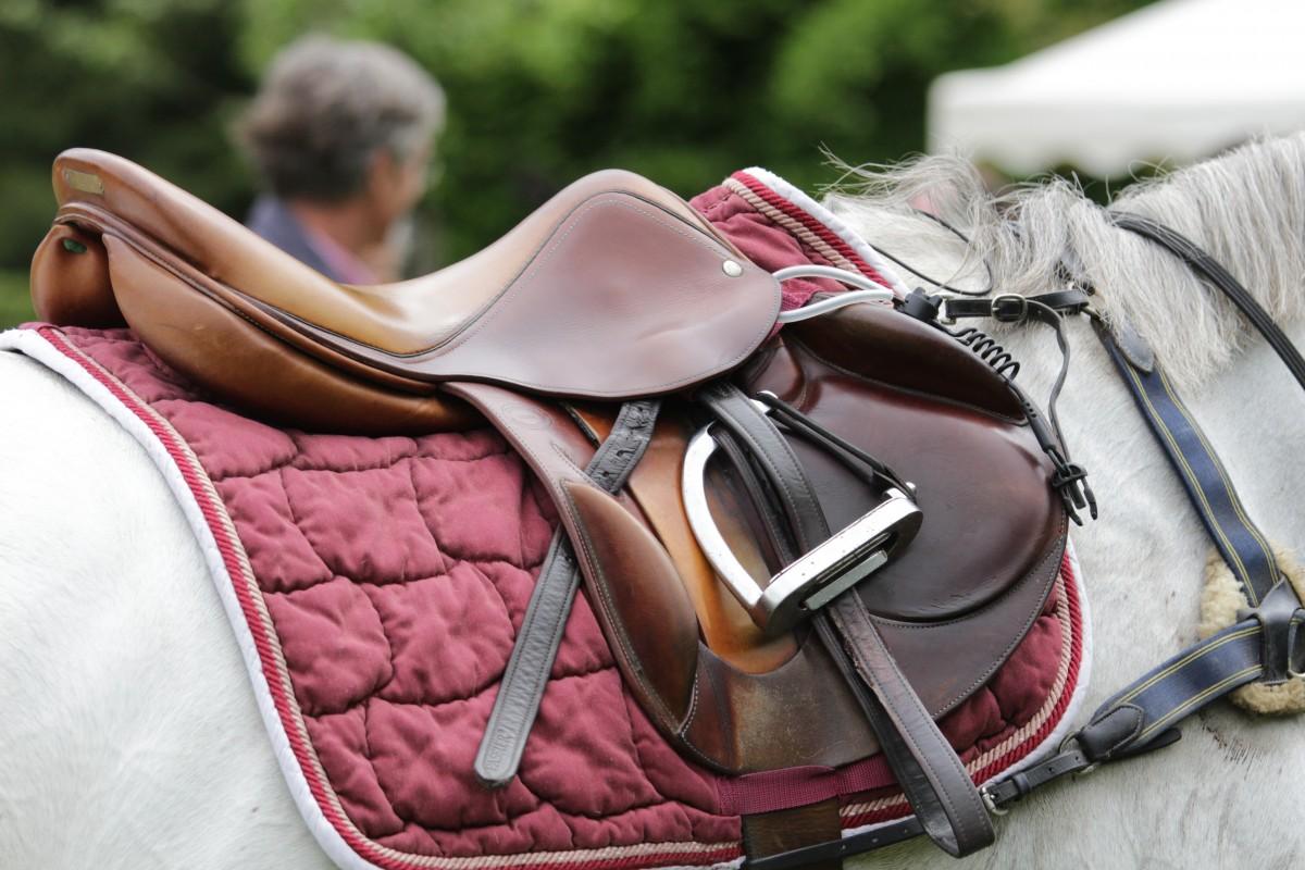 Talentvolle Britse pony-amazone (15) verongelukt