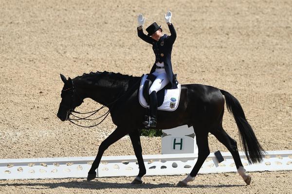 Met focus op de dressuur zijn er nu elf gecertificeerde sportpaarden Nederlands Olympiade Paard