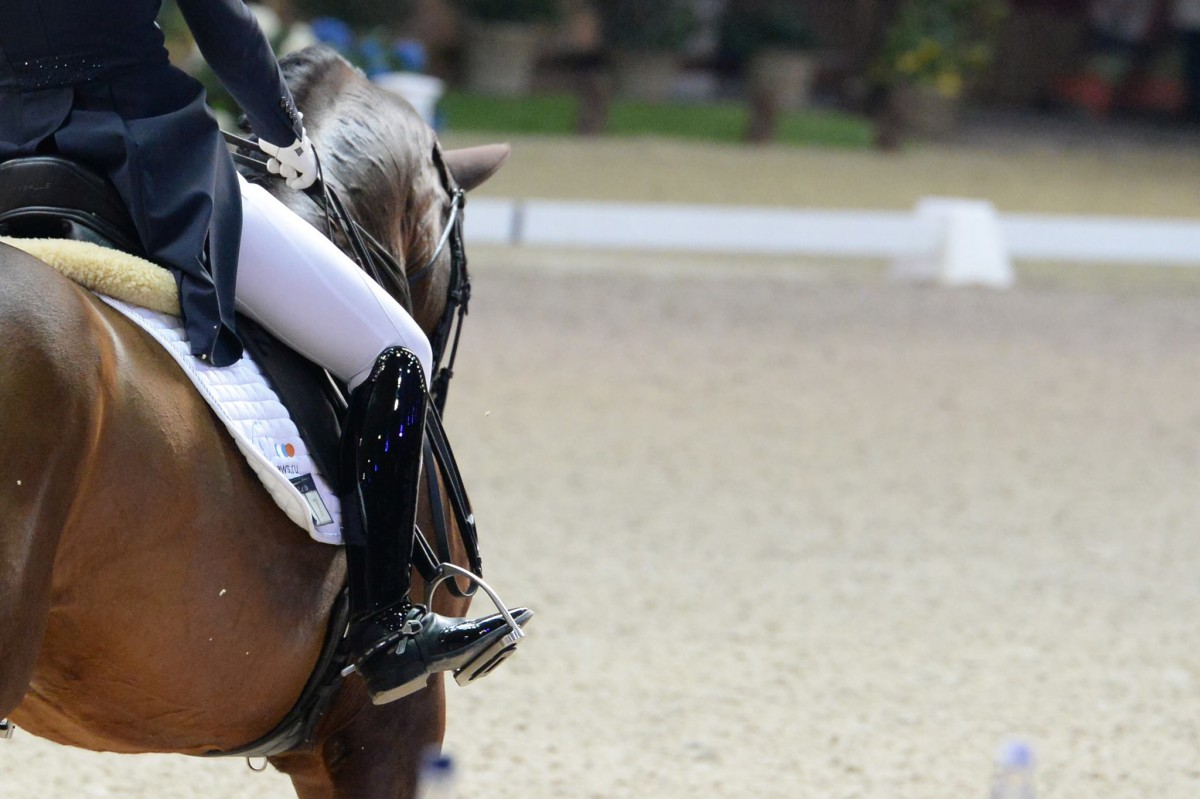 Husband of USA Dressage Team Banned for Life for Alleged Sexual Misconduct Involving Minors
