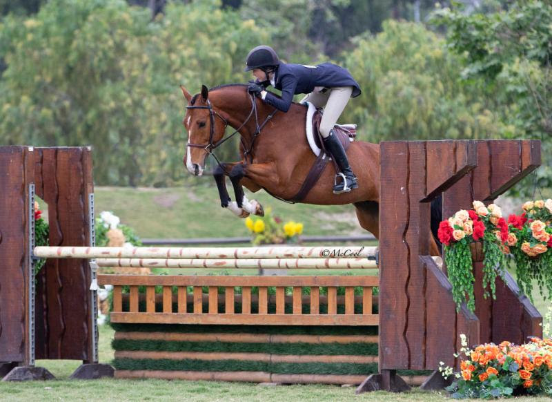 Katie Taylor claims USHJA international Hunter Derby Victory