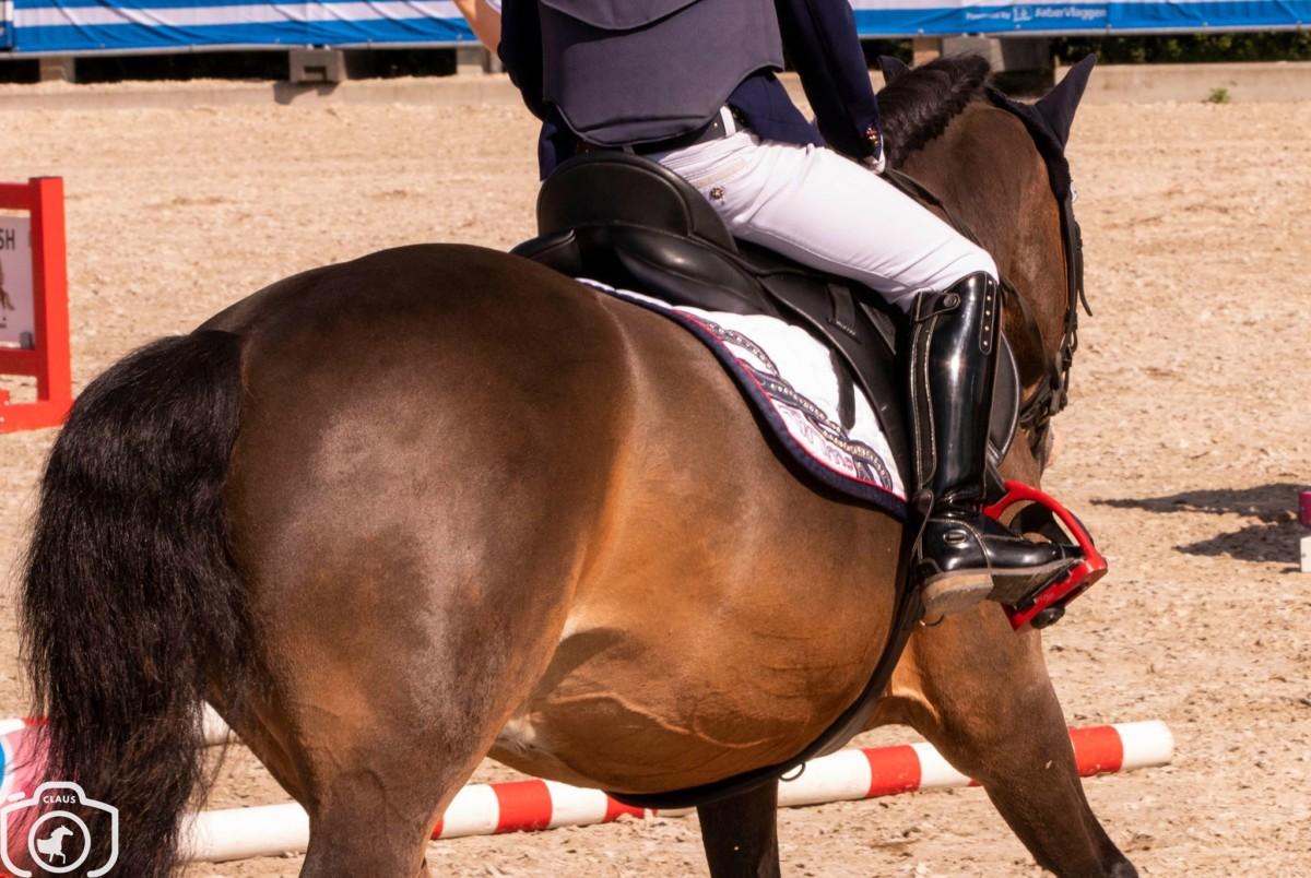 John McEntee winner of the FEI Jumping Ponies Trophy Stuttgart
