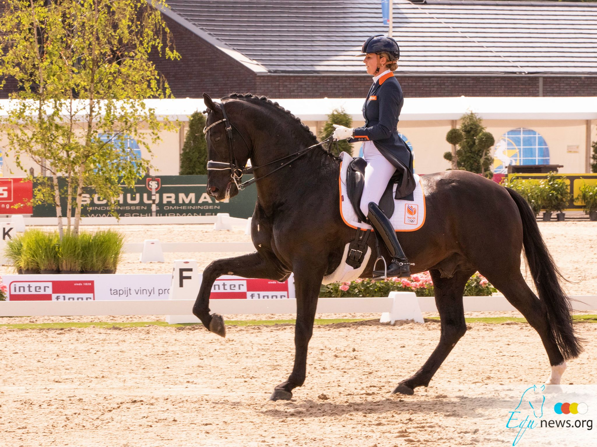 Dutch dressage riders seize the first place in Nations Cup Geesteren