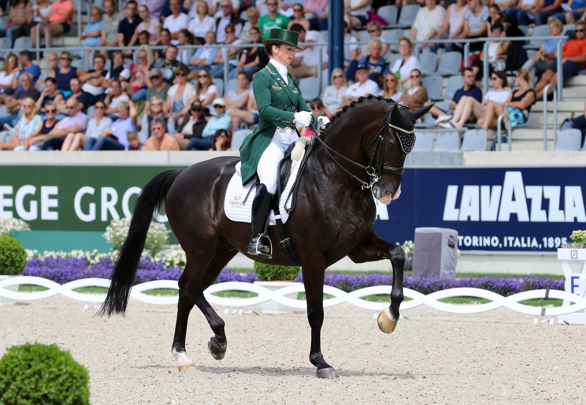 Judy Reynolds smashes Irish record again on way to brilliant fifth place finish in Grand Prix Special at European Championships, Gold for Isabell Werth