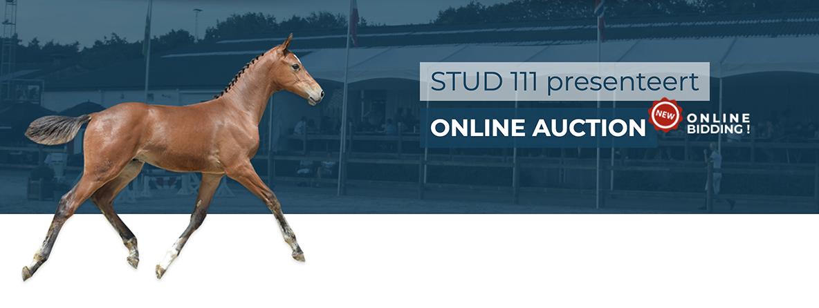 Foal Auction 111 pakt uit met sterk aanbod