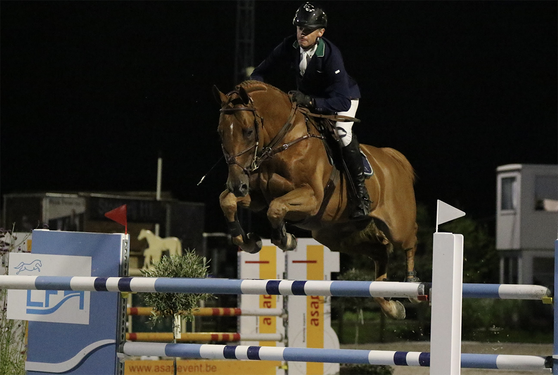 New Grand Prix horse for Denis Lynch