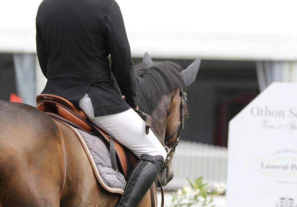Nabab de Reve levert kampioen zevenjarigen in Fontainebleau
