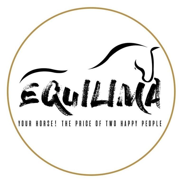 Deze week eerste editie Equilima Foal Auction