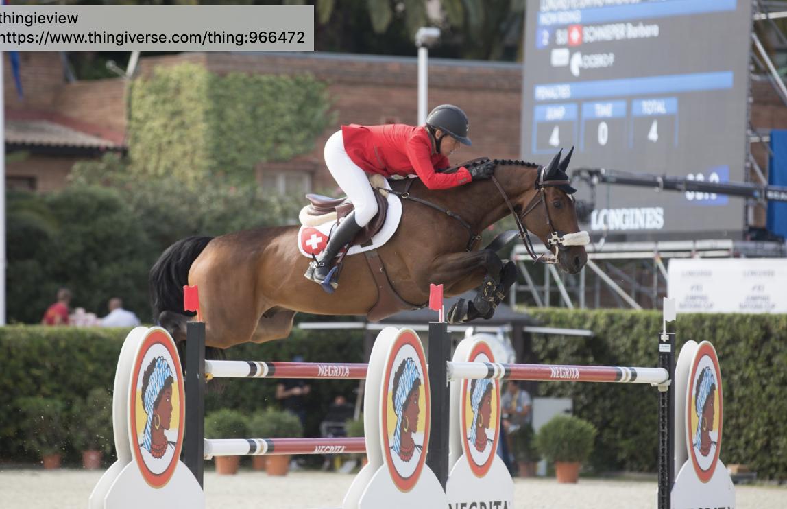 Nations Cup paard,  Cicero F op slechts 10-jarige leeftijd overleden