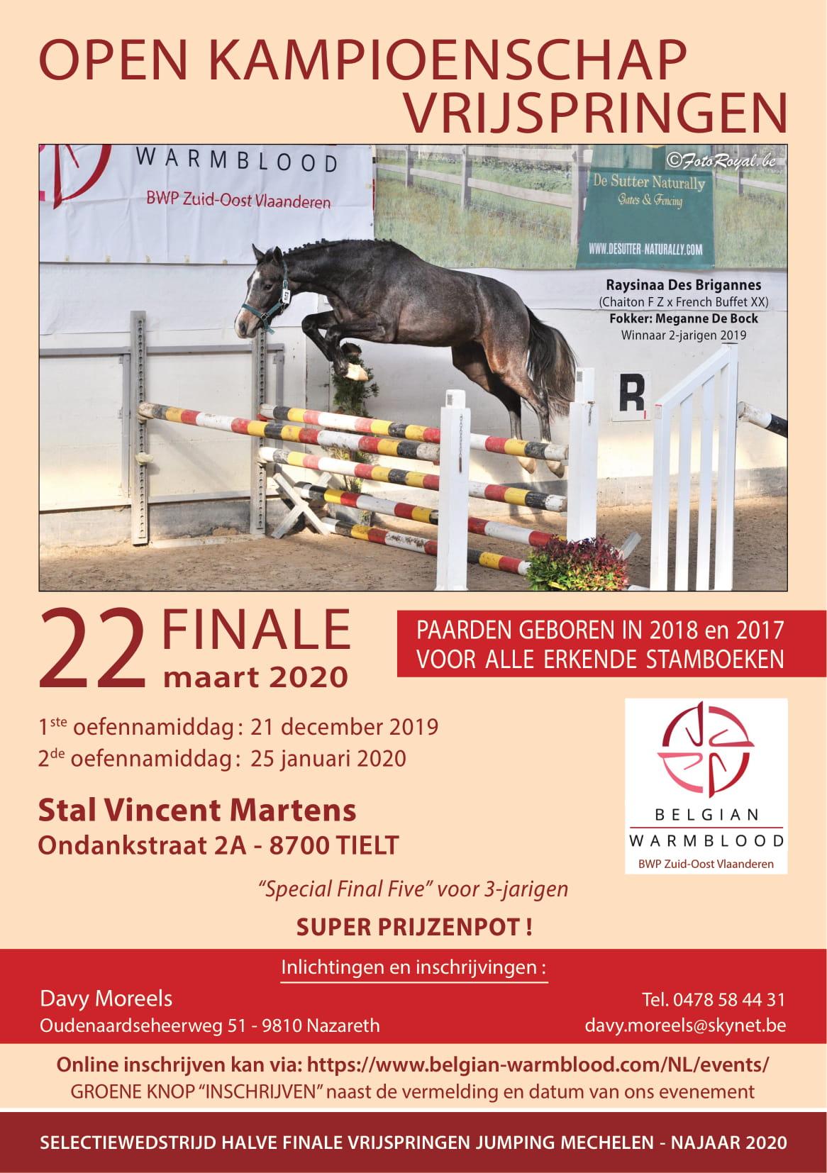 PROMO: Tweede oefennamiddag vrijspringen BWP Z-O-Vl. Locatiewijziging & selectie BWP Young Horses Auction