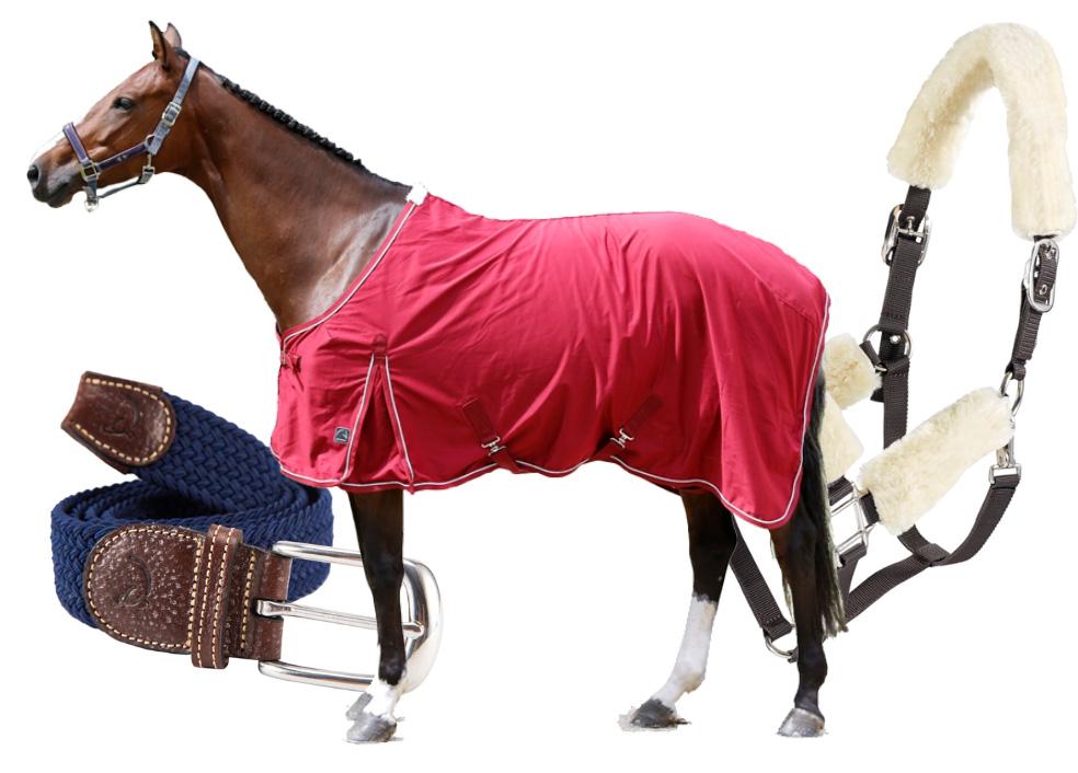 Equnews en Horse2Me verwennen je Valentijn.. WIN één van deze pakketjes voor je Valentijn