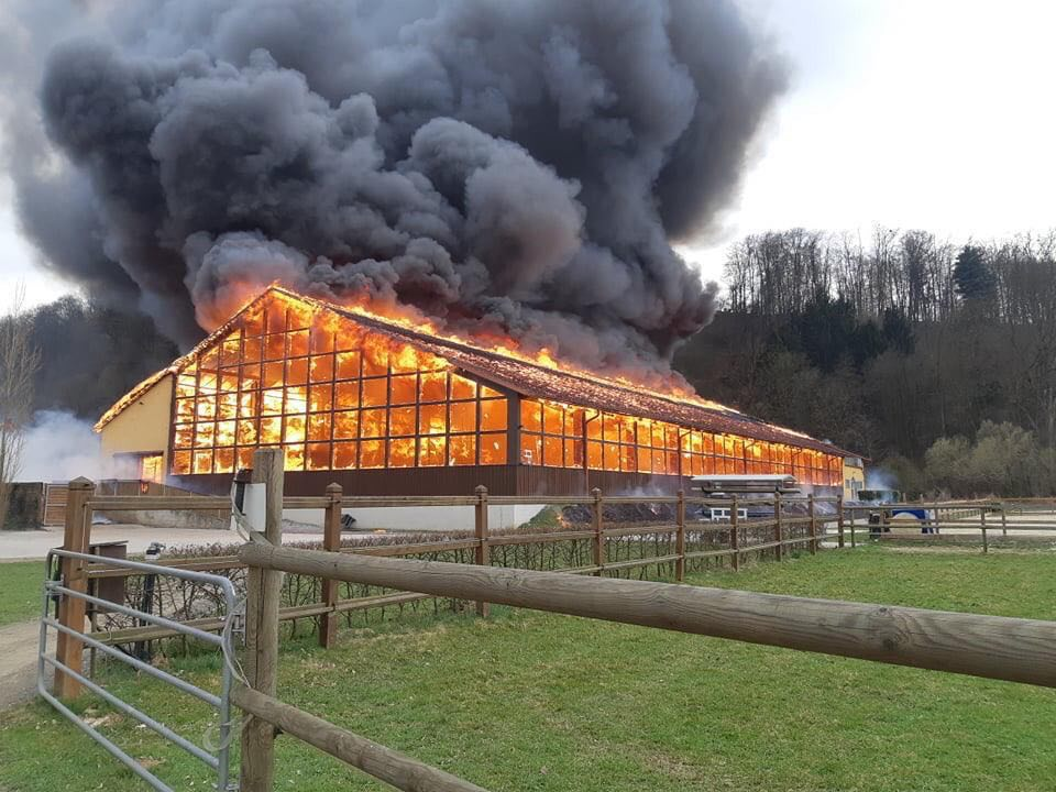 UPDATE: Gerfried Puck's stable destroyed by fire.
