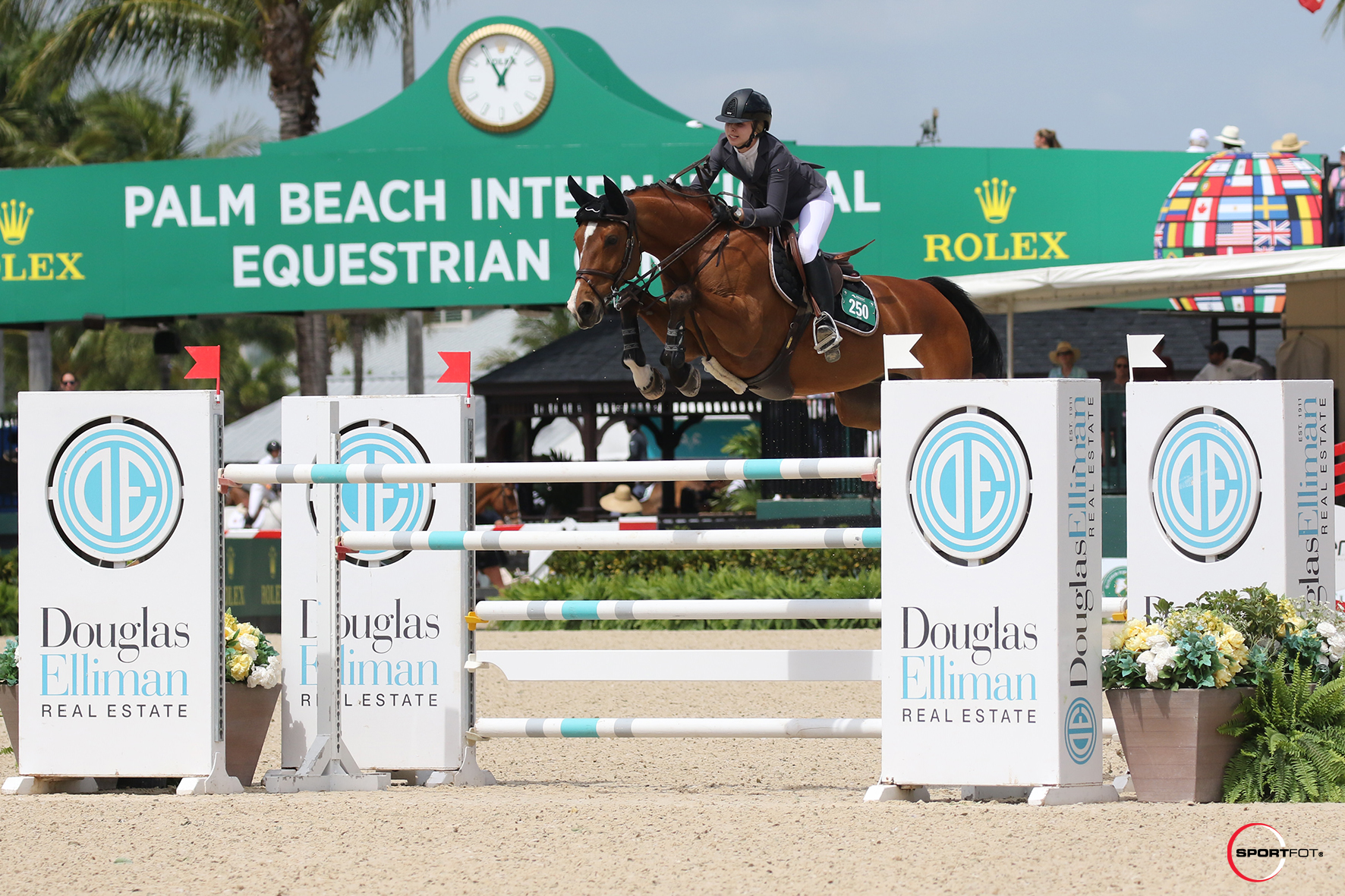 Abigail McArdle Soars to Equinimity WEF Challenge Cup Round 10 Win