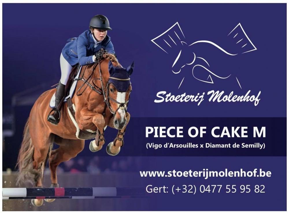 Hensten Spotlight: Focus op jong talent Piece of Cake M
