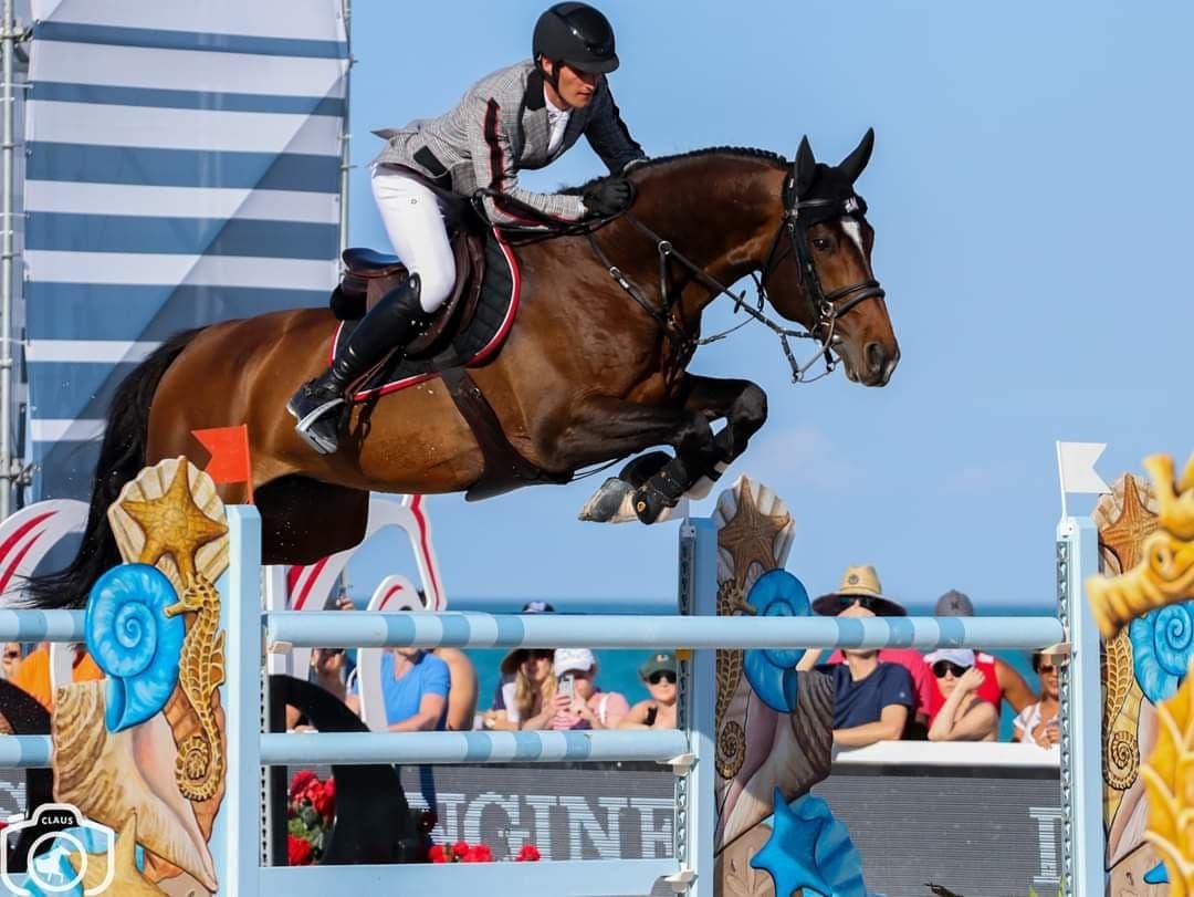 Van veulenveiling naar Grand Prix paard: het verhaal van H&M Extra