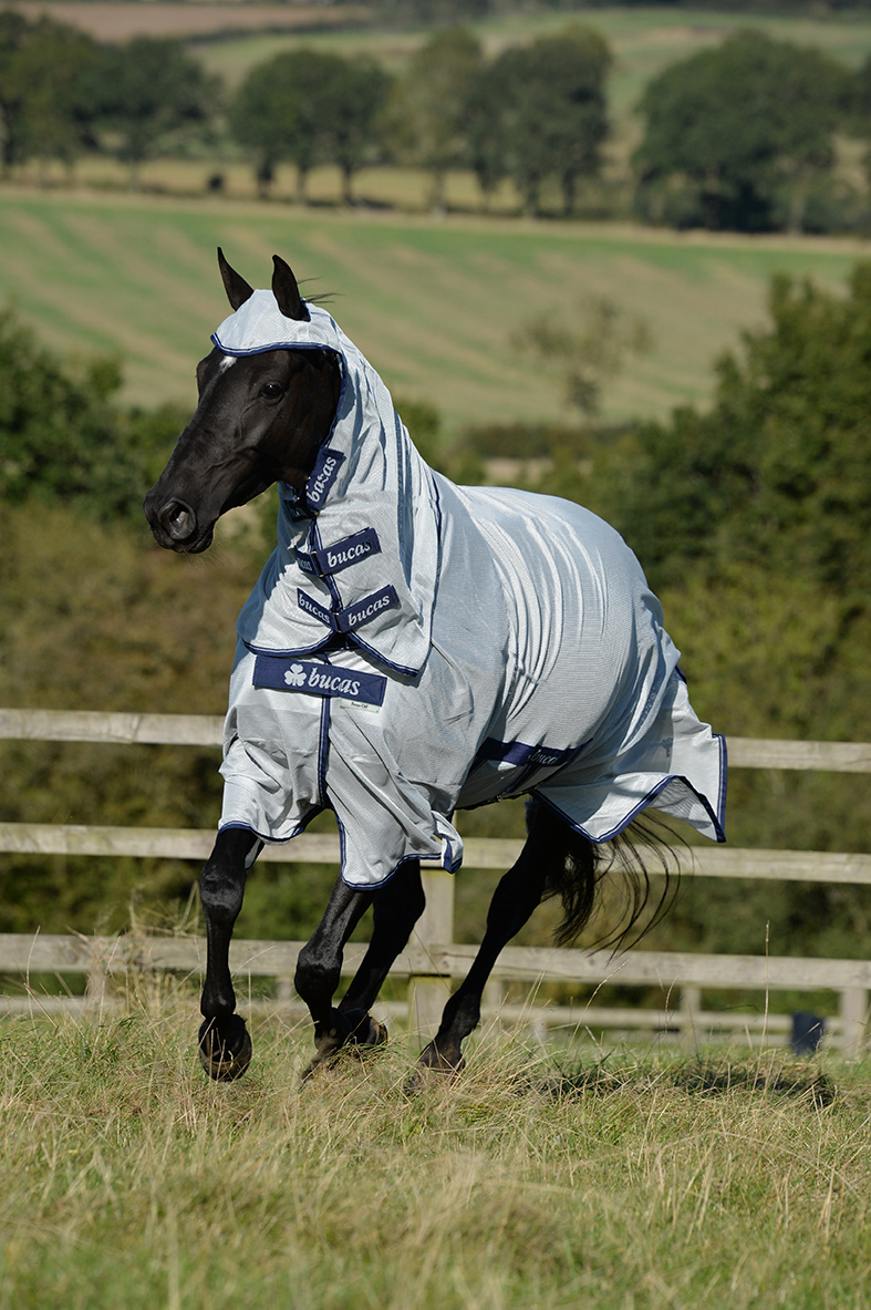 Your horse comfortable in the field? WIN a FREE BUCAS Buzz-off