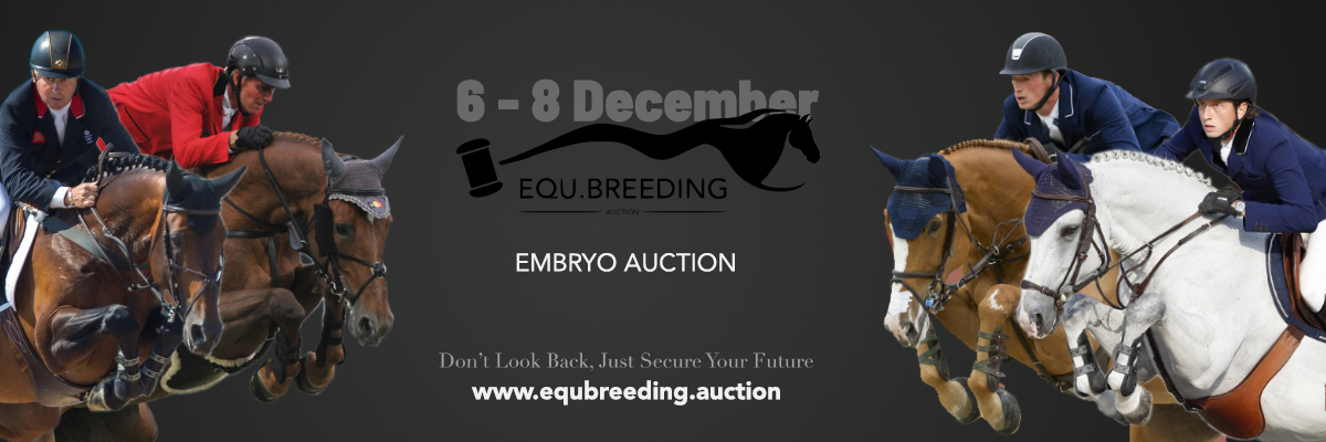 "Equbreeding.auction: ""Dare to dream of an Olympic future..."""