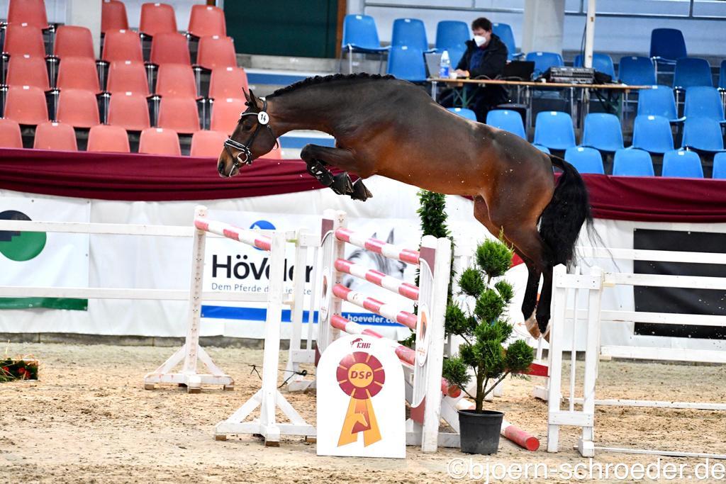 170.000 euro voor DSP Kampioen