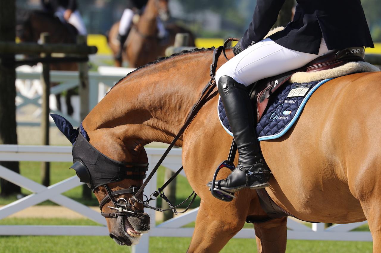 Discussie: Wanneer ben je te zwaar om paard te rijden?