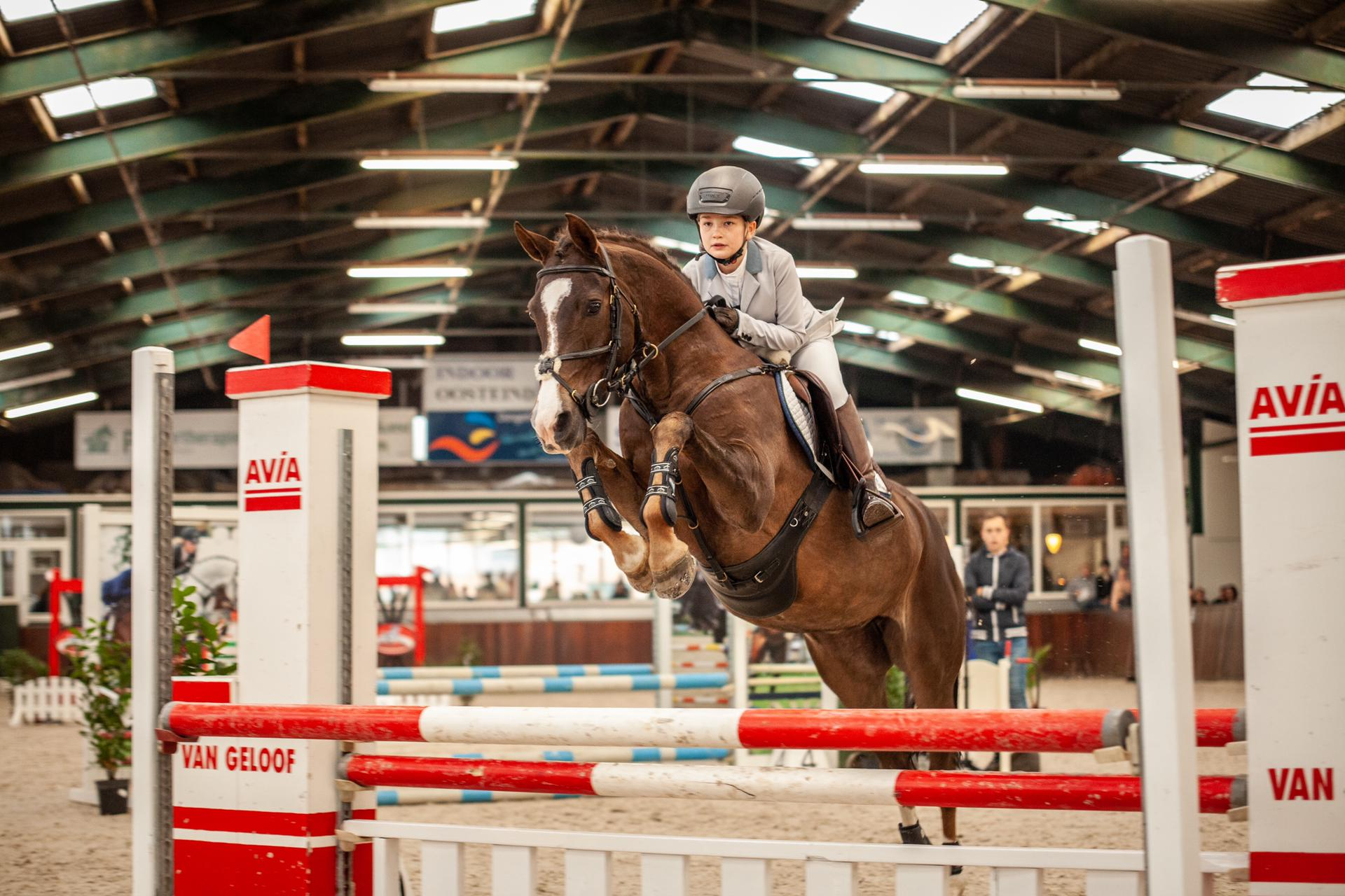 Ruiterclub Zellik blijft grootste paardensport club in Vlaanderen