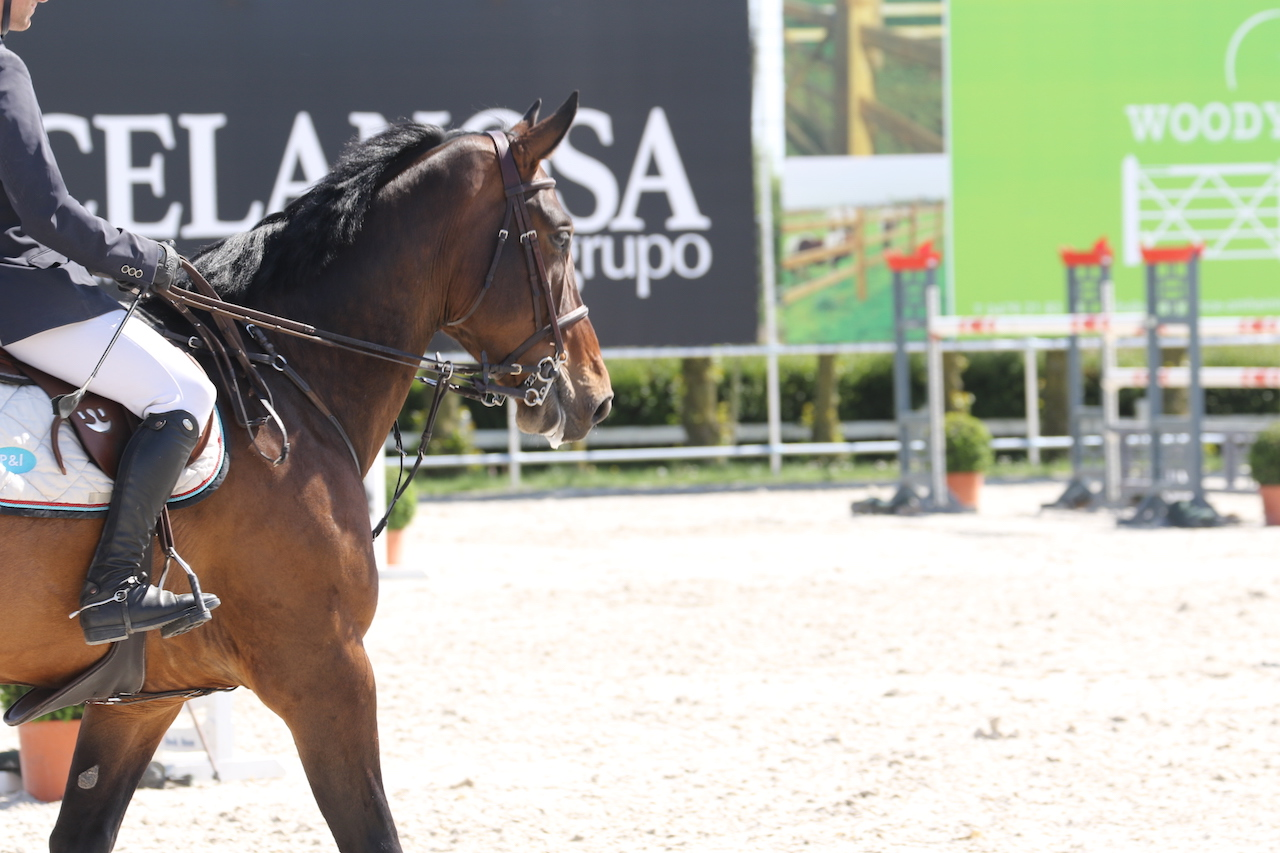 Olympic show jumping champion Uli Kirchhoff plans show center in Iffezheim