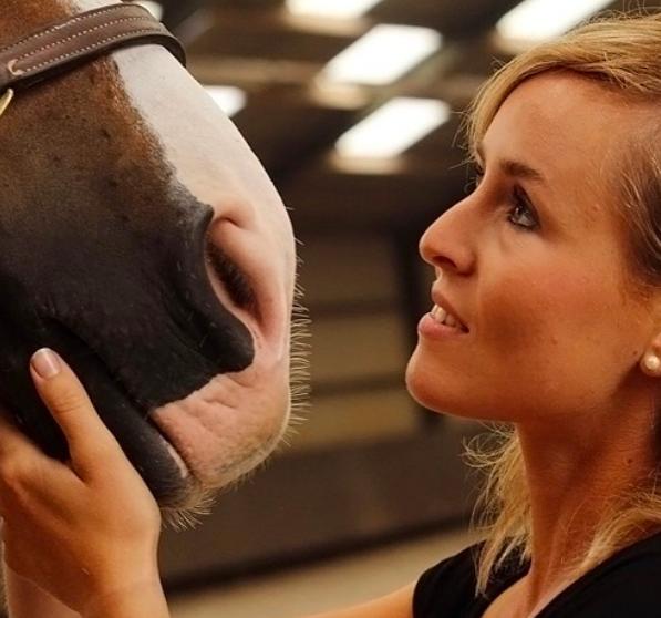 Oproep: Stuur je vragen in voor de Equestrian Mental Coach