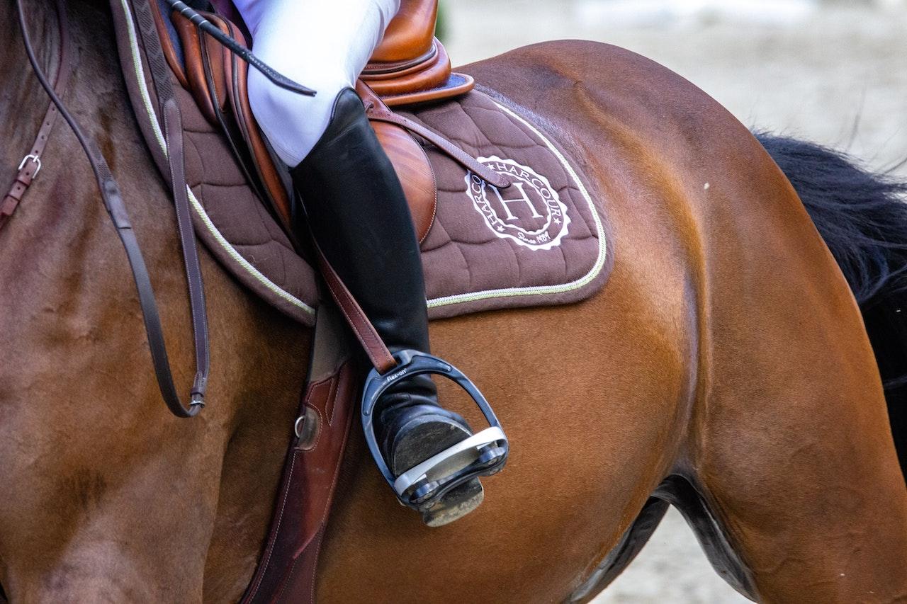 """Stille heropstart van de sport: """"Heeft mijn paard ook last van stijve spieren na een inspanning?"""""""