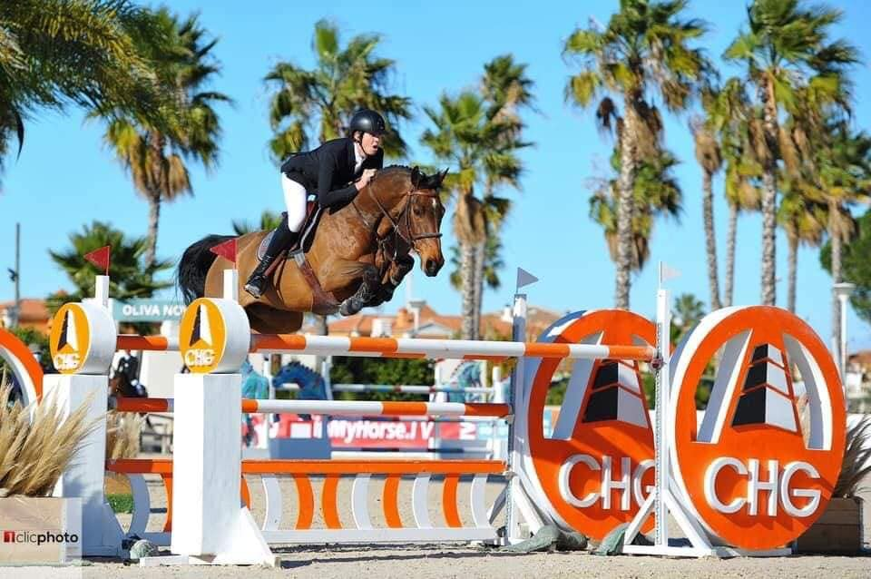 Andres Vereecke sees Grand Prix horse leaving for America