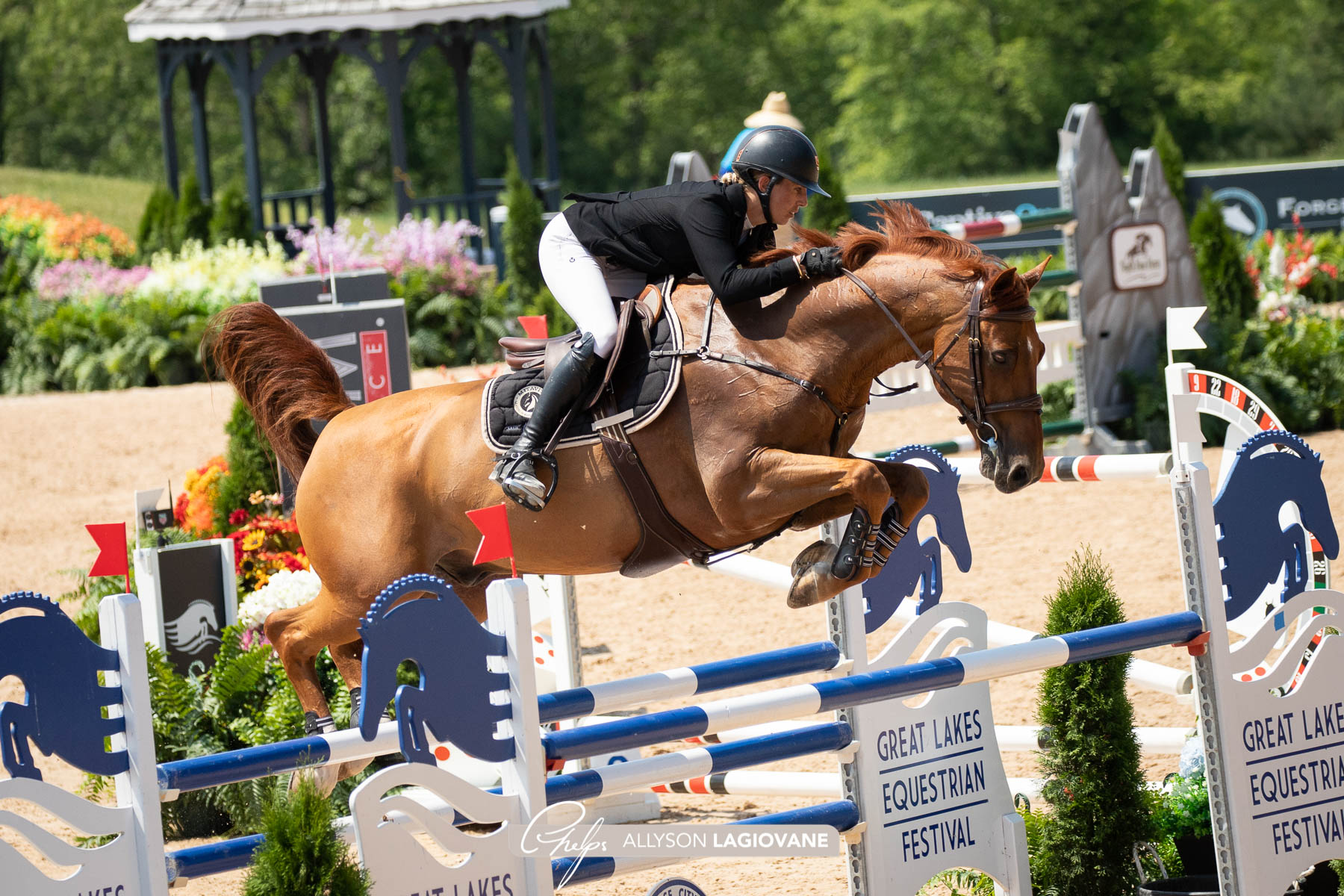 Katie Laurie wins CSI4* opening class in Traverse City
