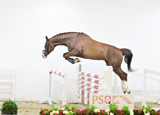 70,000 euros for auction topper PS Auction