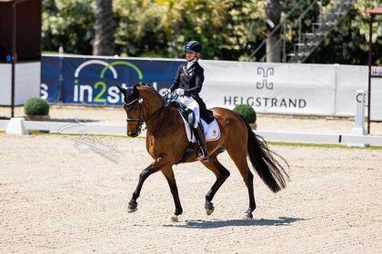 EK Dressur: Jette de Jong knap in top tien Freestyle