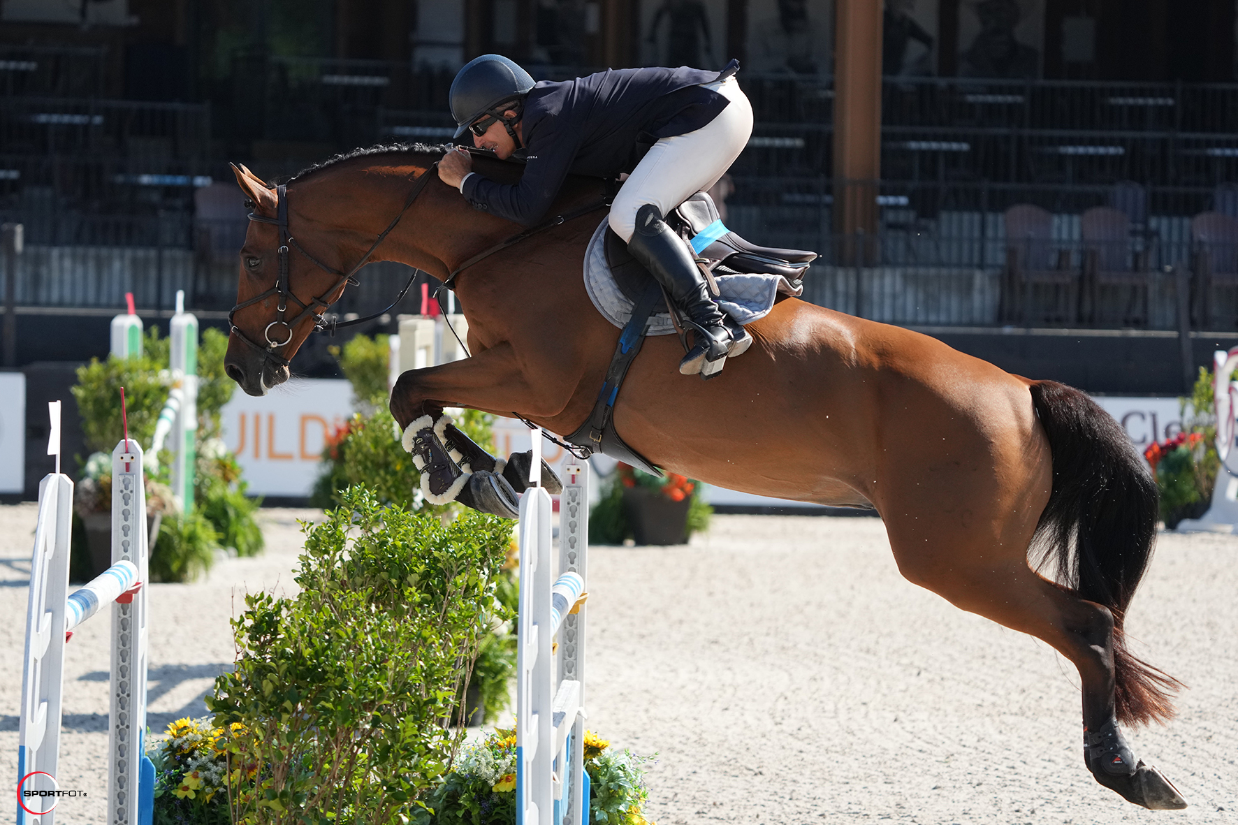 """Aaron Vale Begins with a Bang in $37,000 Horseware Ireland Welcome Stake CSI 2*: """"Hopefully we can keep it up"""""""