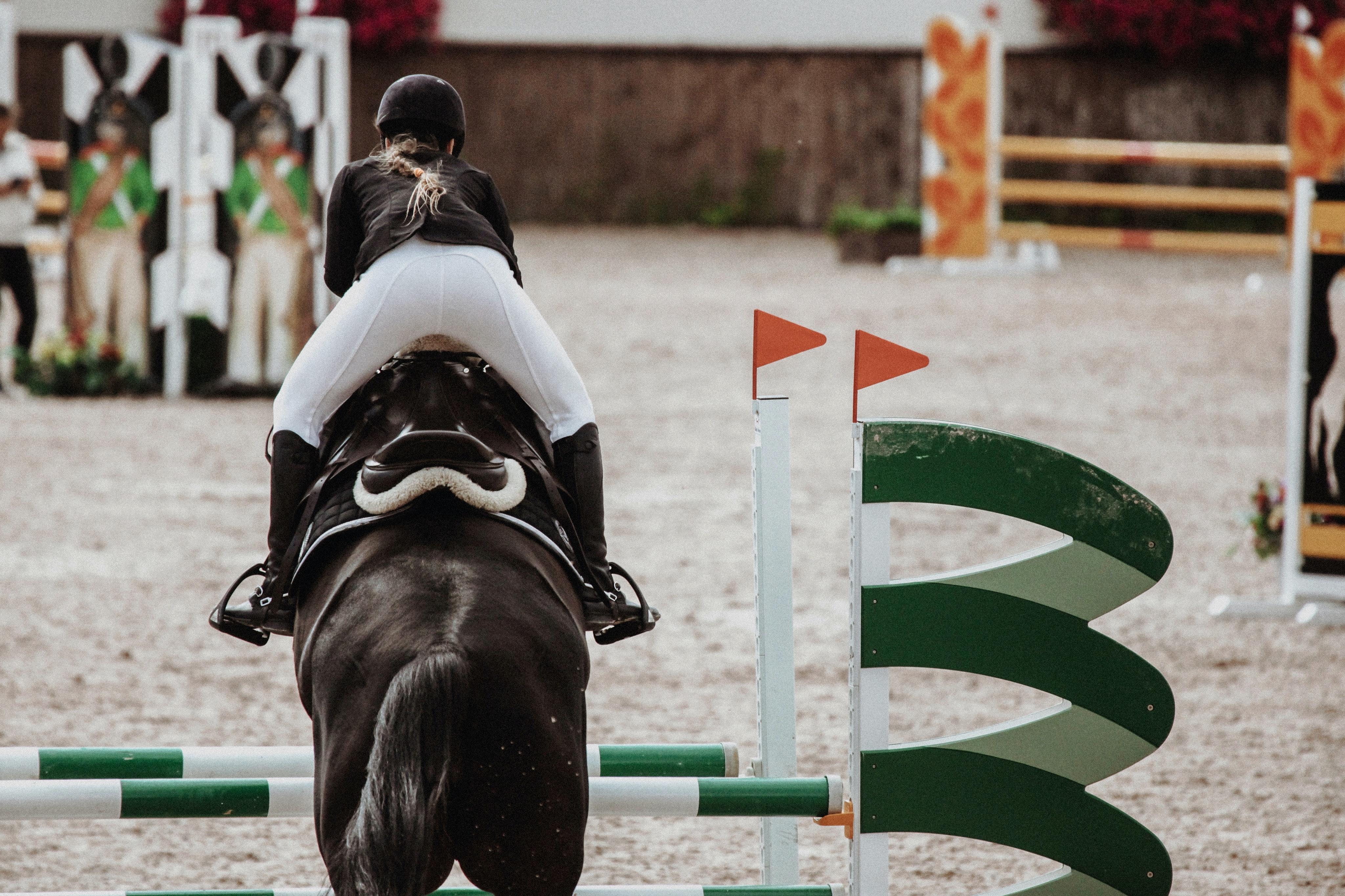 Je paard zal niets leren als je hem altijd juist voor de hindernis zet. Maar... wat moet je dan wel doen?
