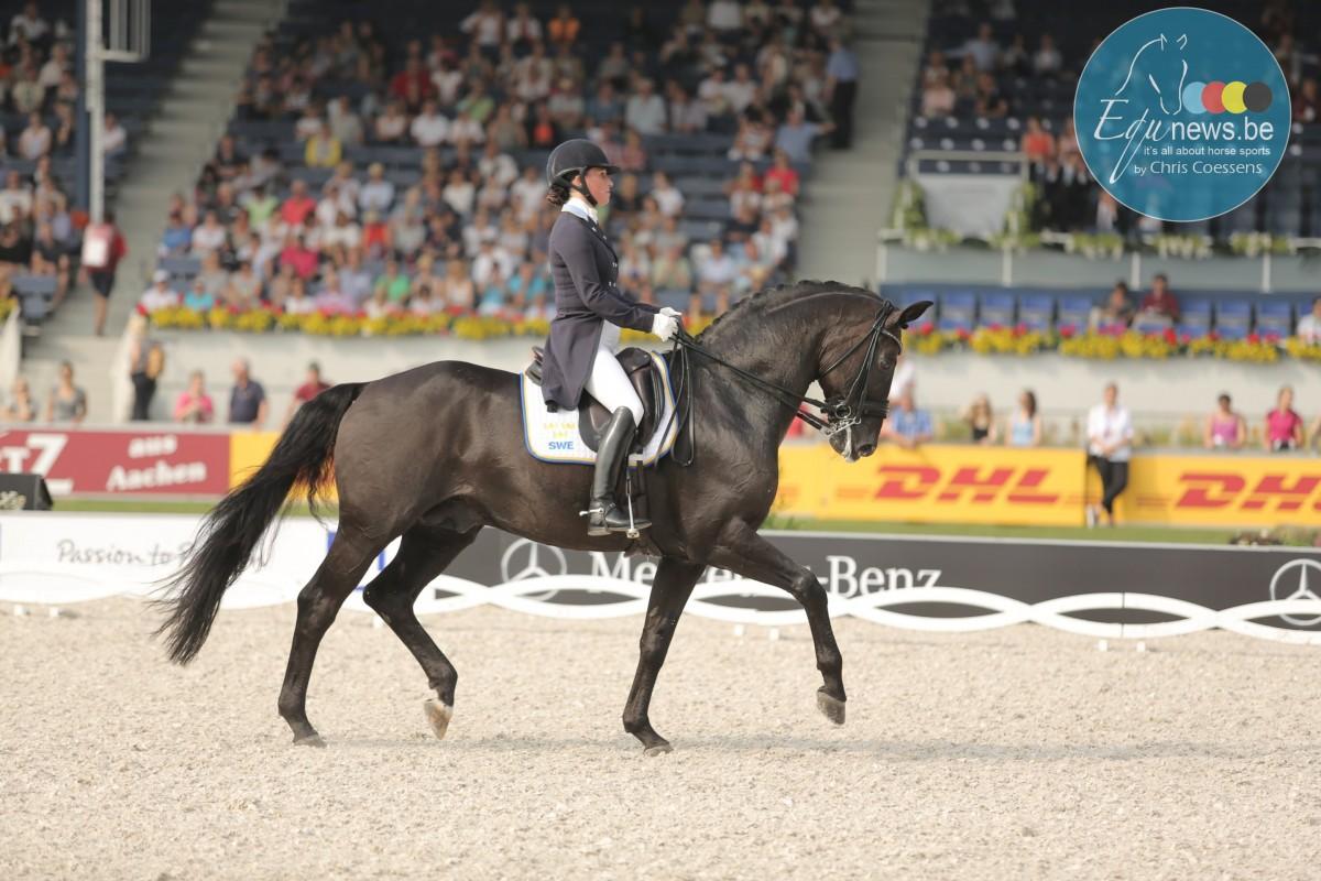 Comeback for Swedish rider Minna Telde and her Santana
