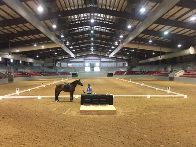 First Coast Classical Dressage Society Riders Make the  State-of-the-Art Jacksonville Equestrian Center their Show Home