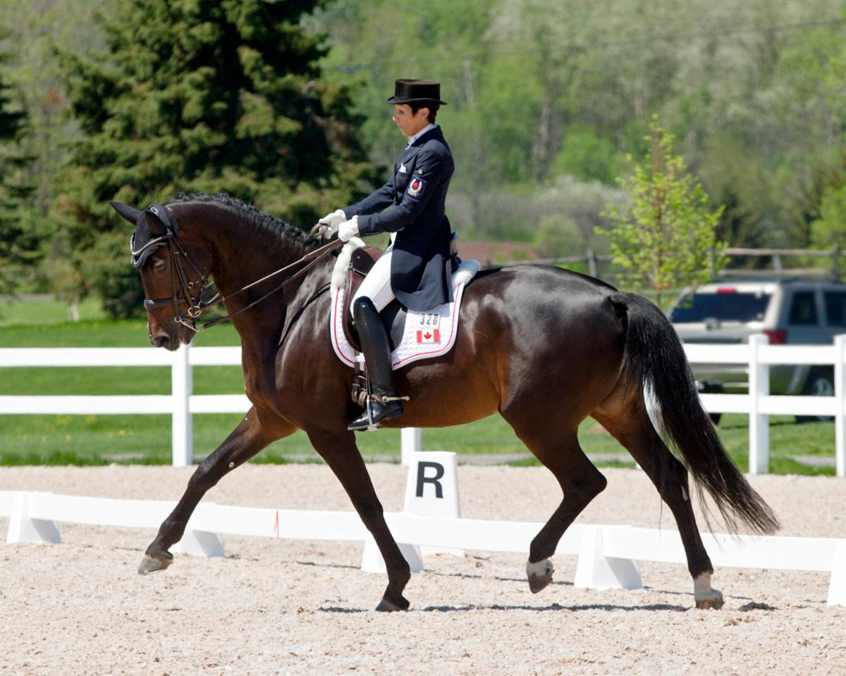 Christilot Boylen Dominates Small Tour at CDI 3* Ottawa Dressage Festival