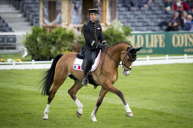 French takes the provisional lead in Nations Cup Eventing