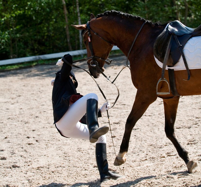 A personal injury claim before the English Courts was dismissed after livery fell off a horse that a yard owner advised her not to buy