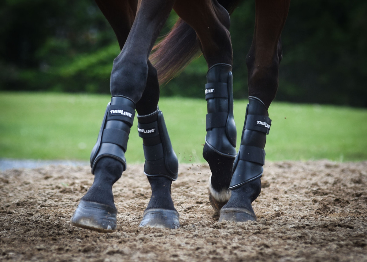 Postponing the Olympics does not affect implementation of new FEI hind boot rule