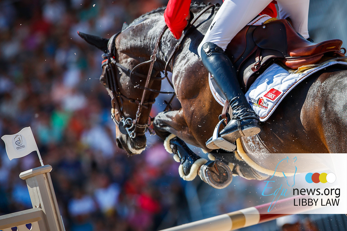 De Vos admits future of World Equestrian Games uncertain