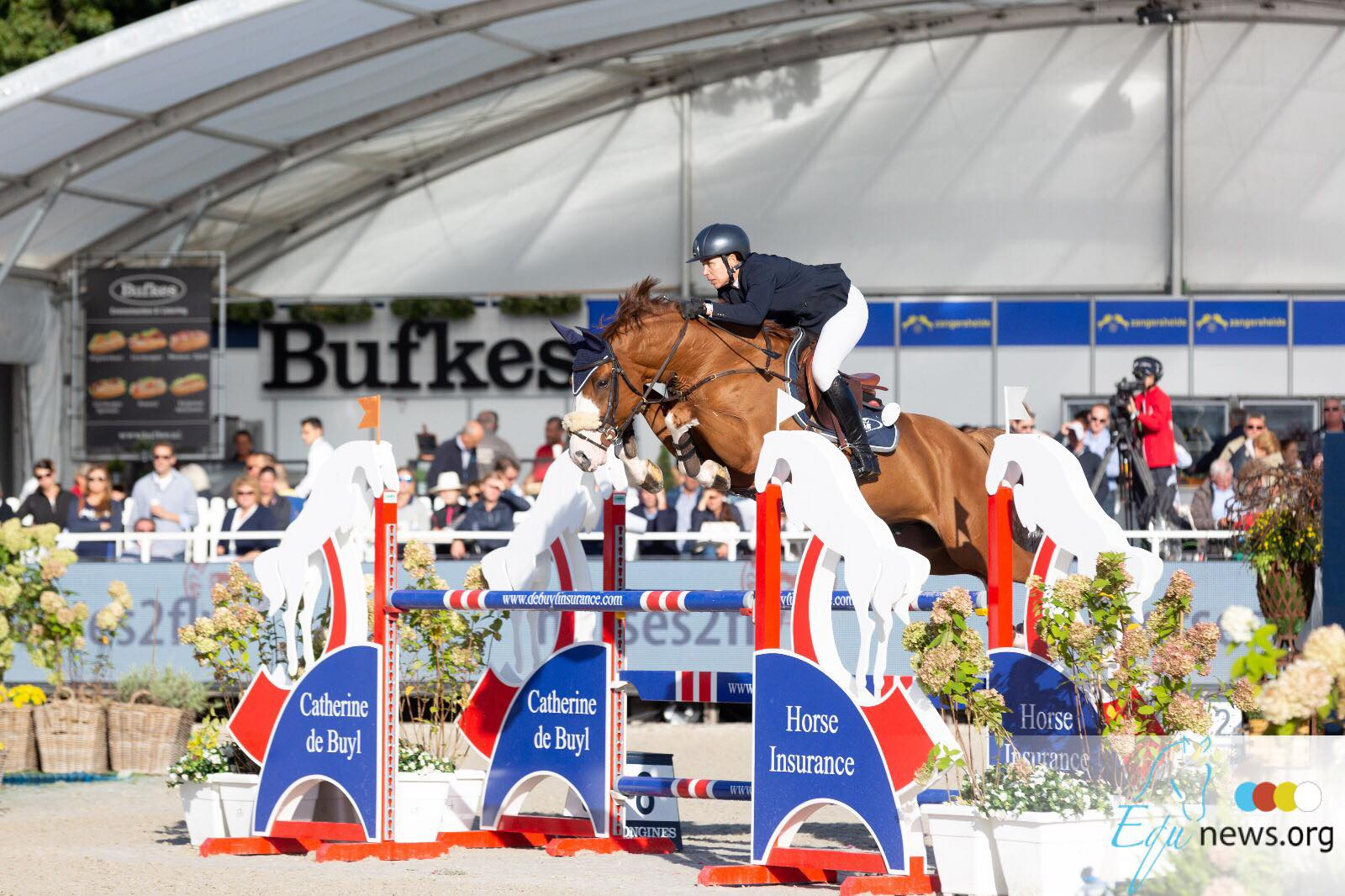 First Horses Stables acquires World Champions Finalist, Be The Freak JT Z