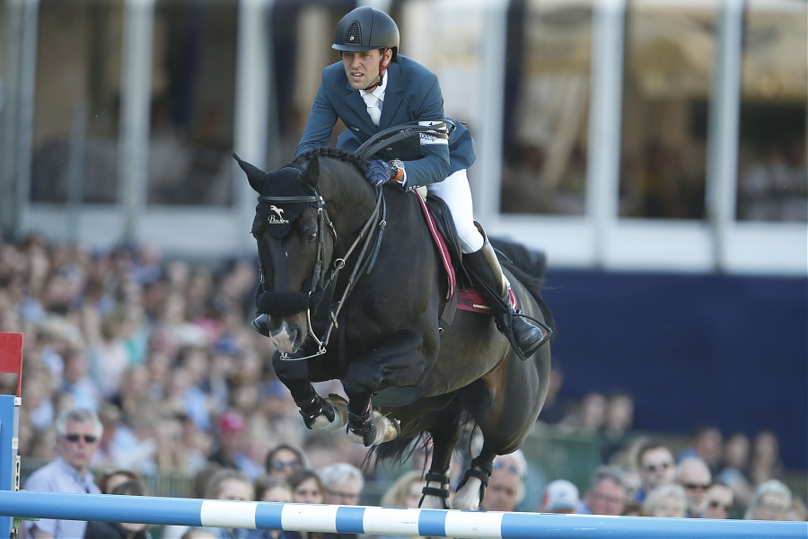 Qlassic Bois Margot approved for the Netherlands KWPN Studbook