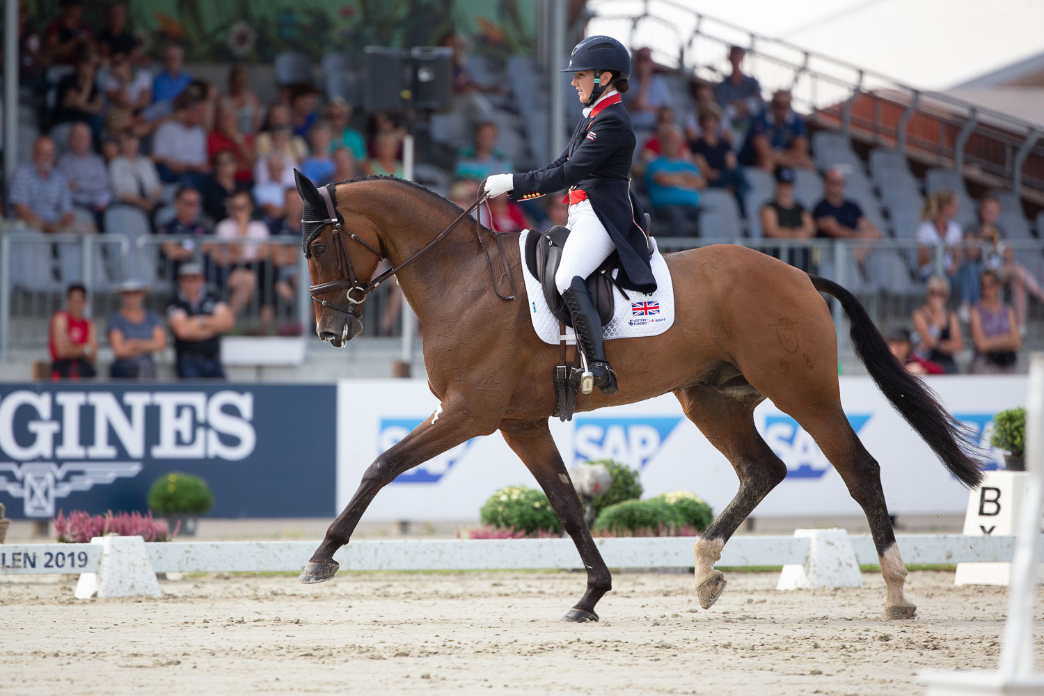 Laura Kollet (GBR) takes the lead after the first day of dressage