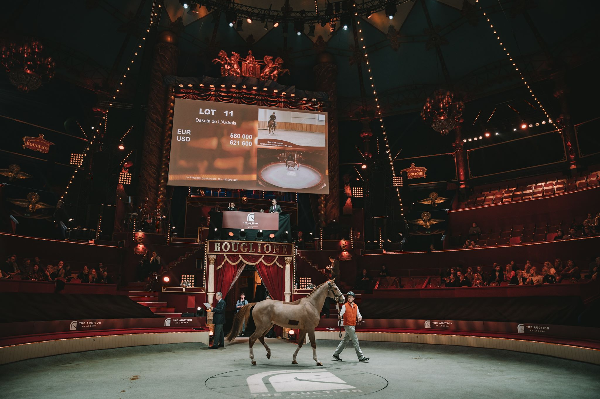 """The Auction by Arqana """"Yearlings & Performers"""" opens a new chapter in the sporthorse trade"""