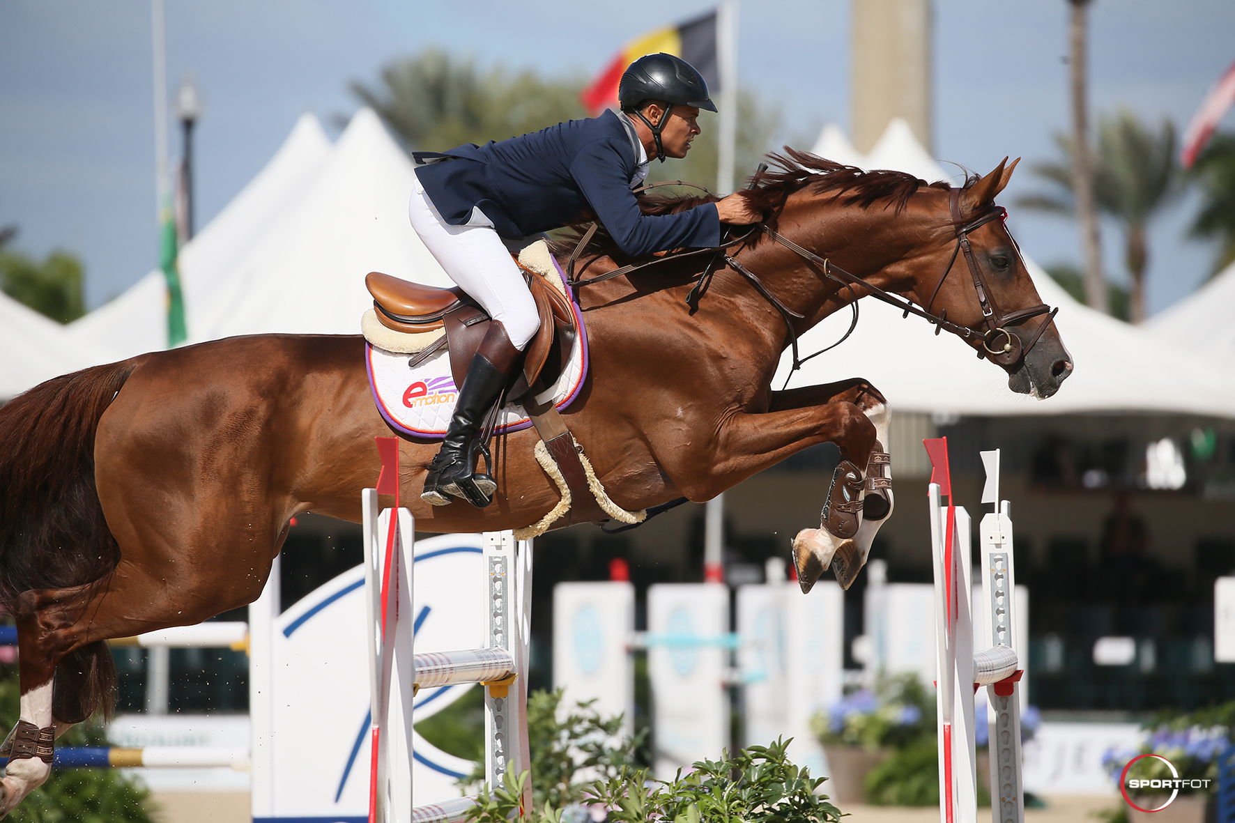Marcelo Ciavaglia Claims WEF Challenge Cup Win in WEF Debut