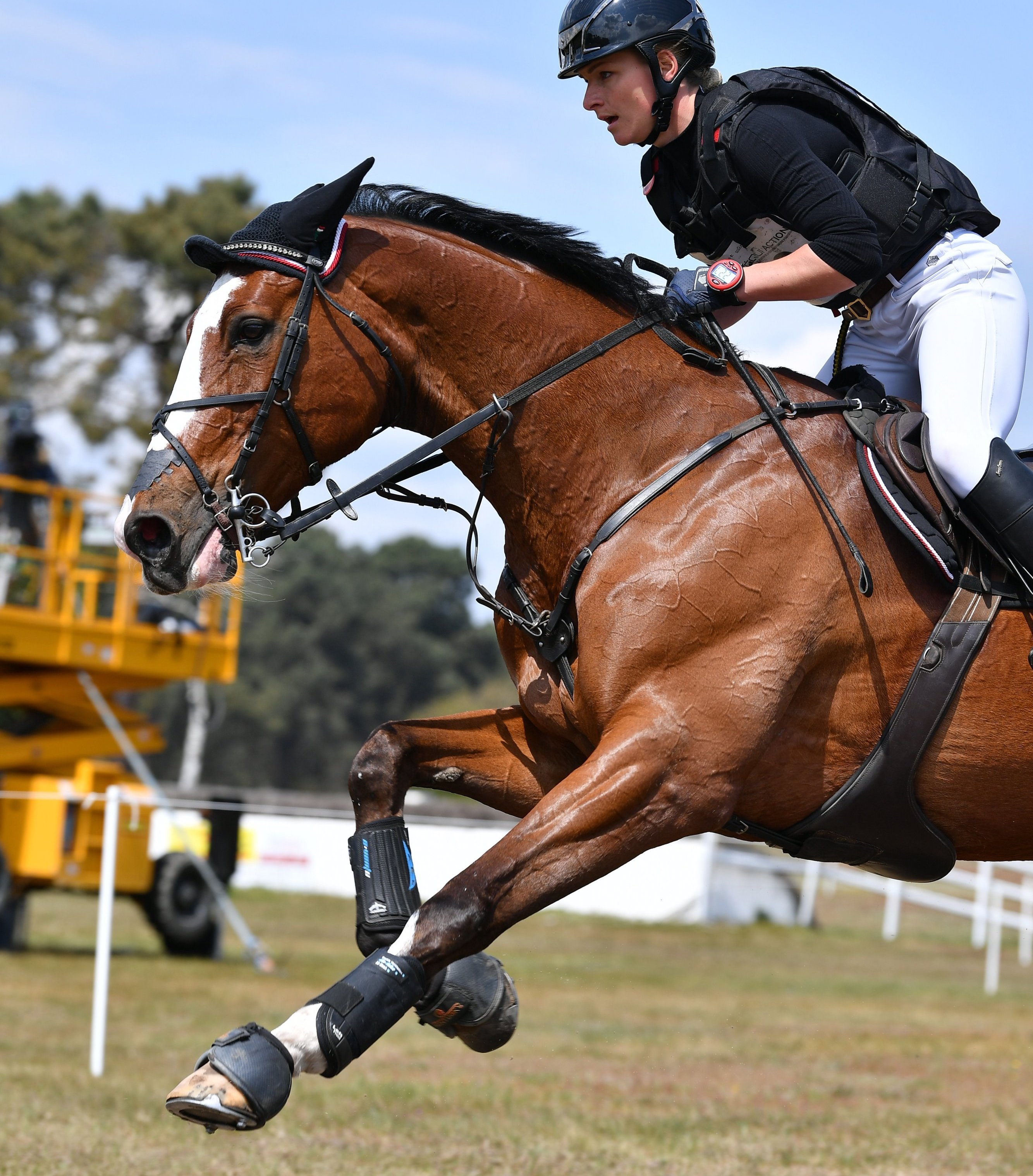 Saumur Complet: Germany's Julia Krajewski still in the lead after cross-country test