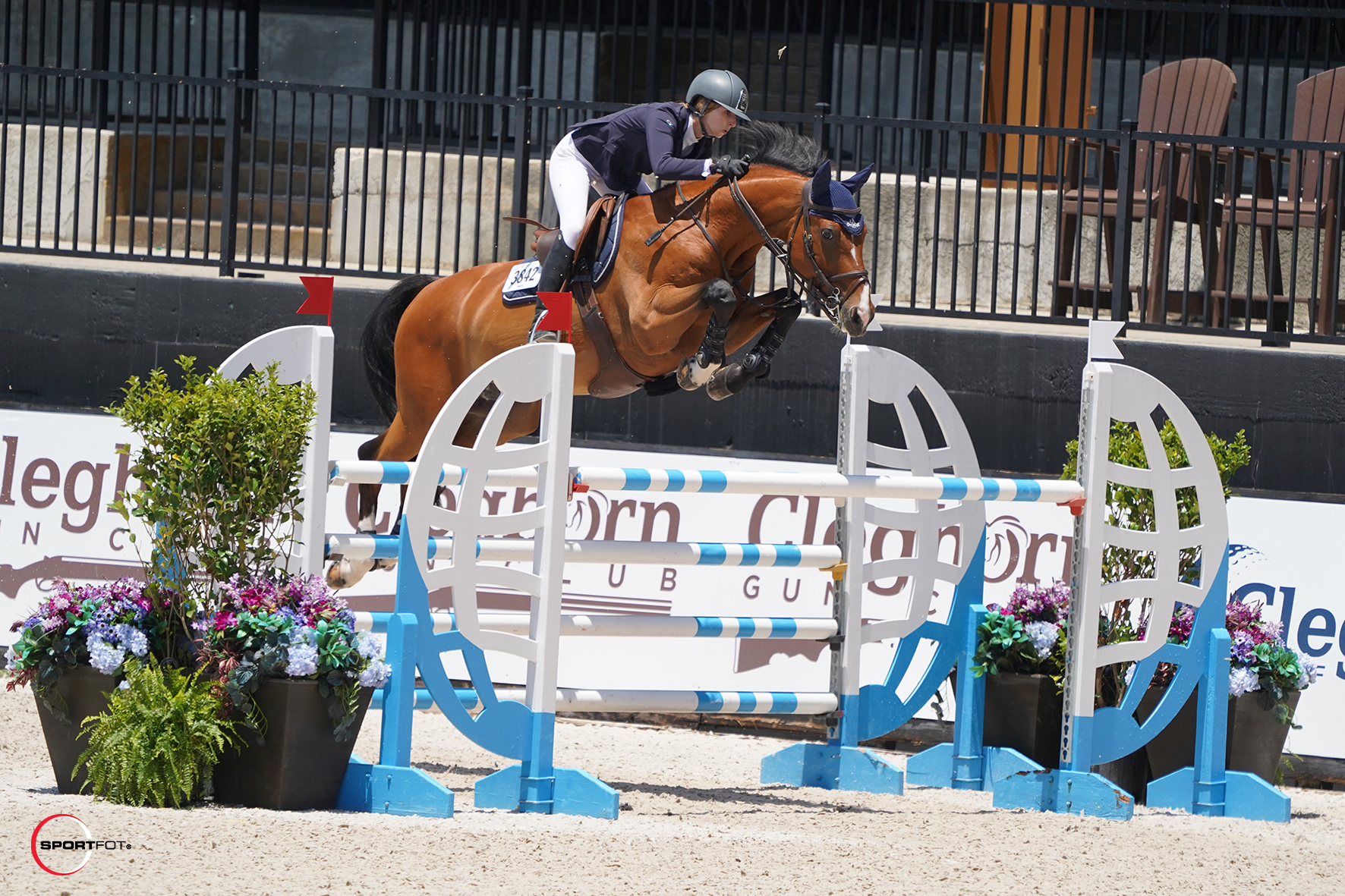 Abigail McArdle and Victorio 5 Victorious in the $25,000 Tryon Resort Sunday Classic
