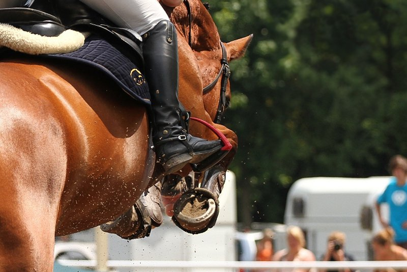 German riders on top in Gross-Viegeln