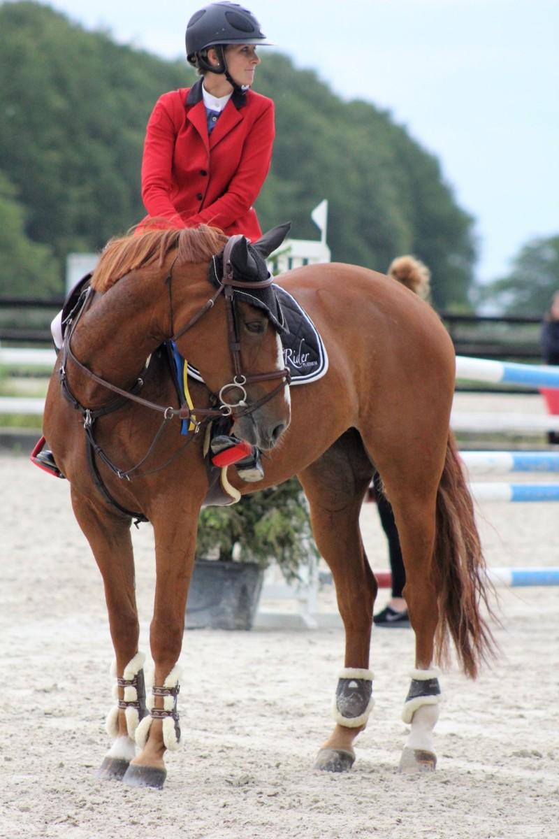 Ce week-end à Gesves le G.H.C.R. mettait les jeunes chevaux à l'honneur à l'occasion de leur championnat annuel.